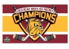 NCAA 2018 Hockey Championship 3x5 Flag by WinCraft