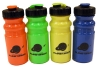 Marshall W. Alworth Planetarium Water Bottle