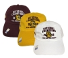 Cover Image for NCAA 2018 Hockey Championship Locker Room Adjustable Cap