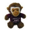 Image for UMD Plush Stuffed Monkey with T-Shirt
