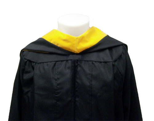 Image For Masters Hood Gold
