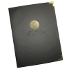 Image for Gold Medallion UMD Padholder
