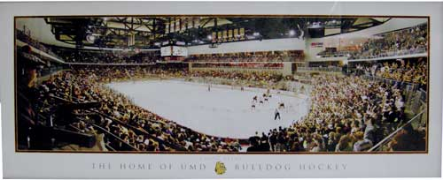 Image For Amsoil Arena Panoramic Print by Karl Jaeger